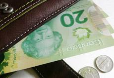 Assessing the Debt Capacity of a Company - Financialized com